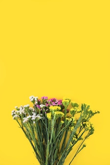 Collection of colorful flower bouquet