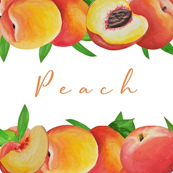 Collection. delicate peach. fruit set. frame. hand drawing. delicate fruits drawn and isolated with watercolor in style of realism.