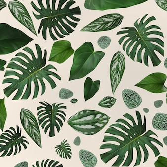 Collection green leaves pattern for nature concept