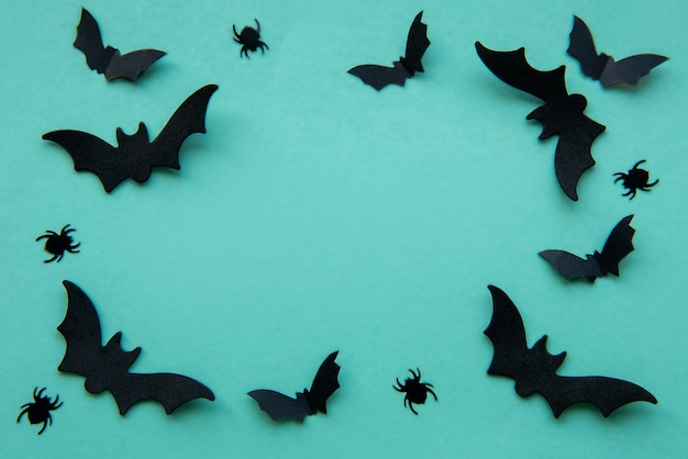 Collection of halloween party objects forming a frame, black bats and spiders on a green background
