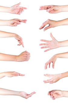 Collection of hand gestures over white backdrop