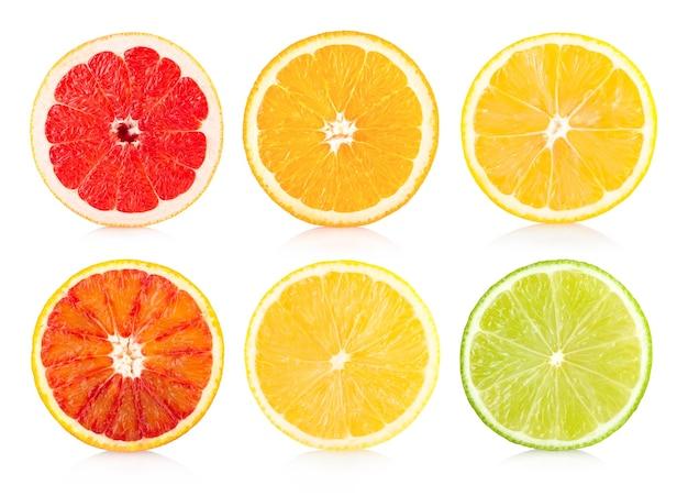 6つの柑橘類のサイスのコレクション