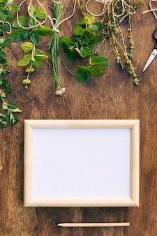 Collection of green plant twigs near scissors and photo frame