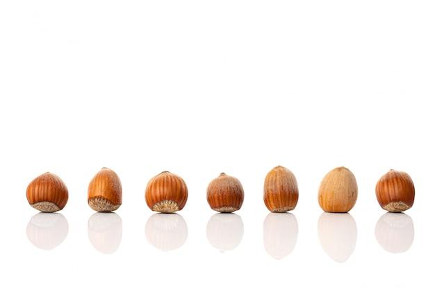 Сбор орехов в скорлупе в одинаковых позициях, изолированных на белом фоне