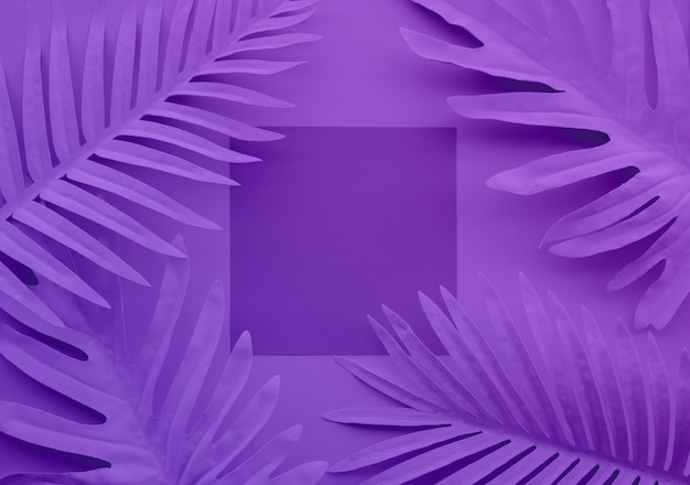 파스텔 열 대 잎, 공간 배경으로 단풍 식물의 컬렉션입니다. 추상 잎 장식 디자인입니다. 표지 서식 파일에 대 한 이국적인 자연