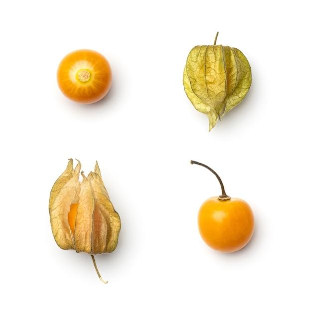 白で分離されたホオズキの果実のコレクション