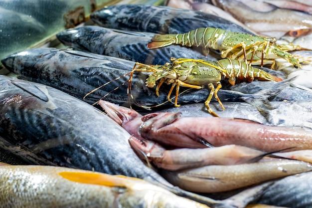 シーフード市場の様々な海の魚のコレクションがクローズアップ