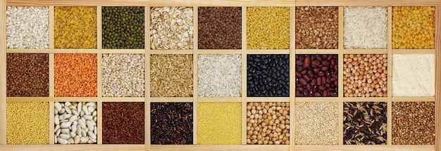 Collection of raw cereals, beans and seeds