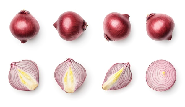 Collection of red onion isolated on white background. set of multiple images. part of series
