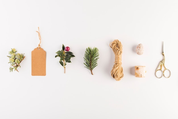 Collection of tag, twig, flower, scissors and threads