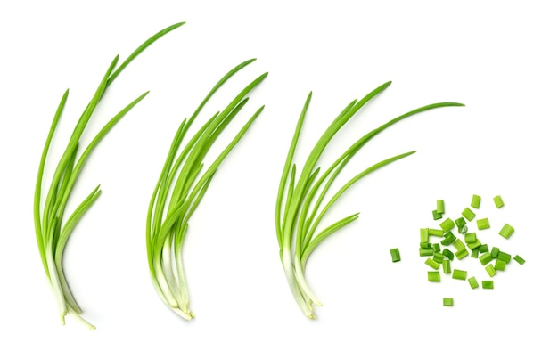 Collection of young green onion isolated on white background. set of multiple images. part of series Premium Photo
