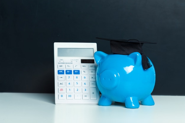 College graduate student diploma piggy bank