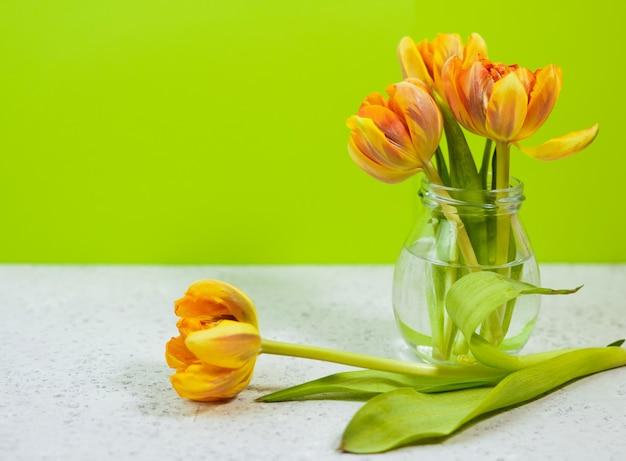 Строка тюльпанов в вазе на coloful предпосылке с космосом для сообщения. день матери фон.