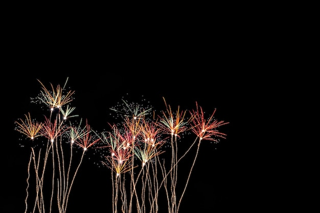 The color and beautiful of fireworks, in the black sky at night time, for celebrating the holidays festival, to happy new year concept.