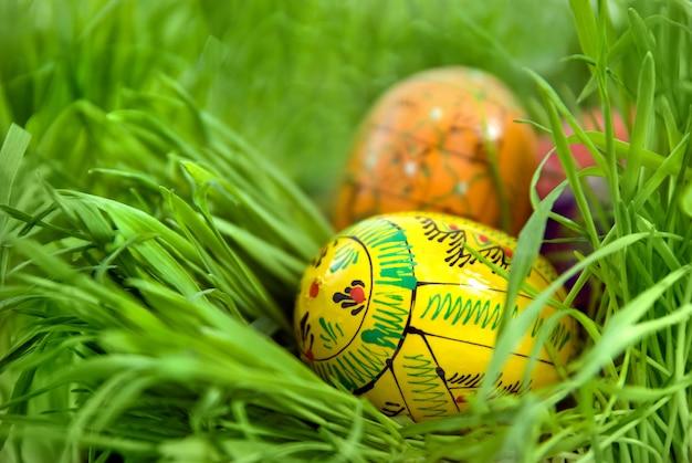푸른 잔디에서 둥지에서 부활절 달걀 색상