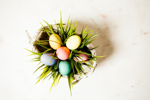 Color eggs in the grass, copy space for easter greetings