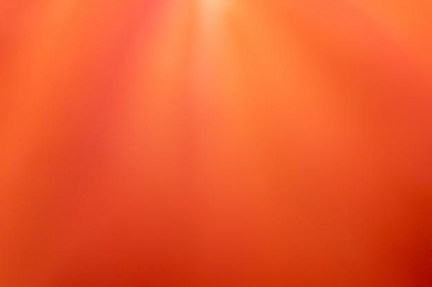 Цветной переливающийся цветочный фон или обои - размытая текстура лепестка красного цветка. скопируйте место для текста.
