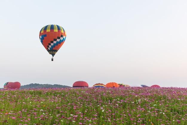 Color hot air balloon over cosmos flower garden