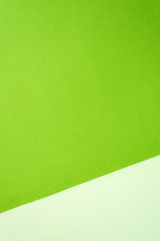 Color of pastel shades of green paper backdrop. frame, copy space. blank for design.