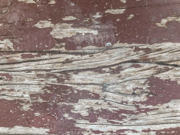 Color peeling paint old wood wall texture.