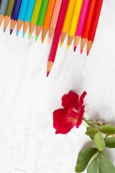 Цветной карандаш на гранж белое дерево