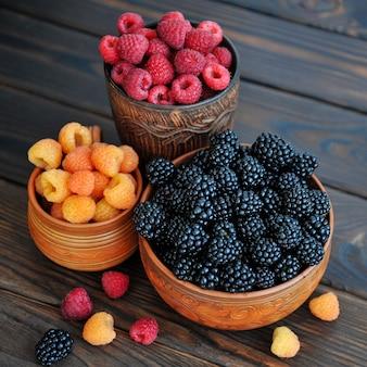 Цветные ягоды красно-желтой и черной малины