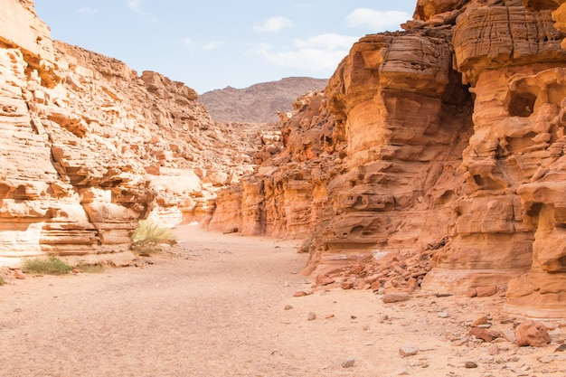 Colored canyon with red rocks in desert