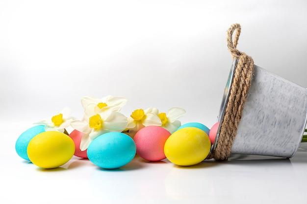 Цветные пасхальные яйца и цветы нарцисса на белом фоне