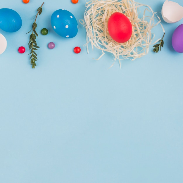 Colored egg in nest with green plant branch and candies
