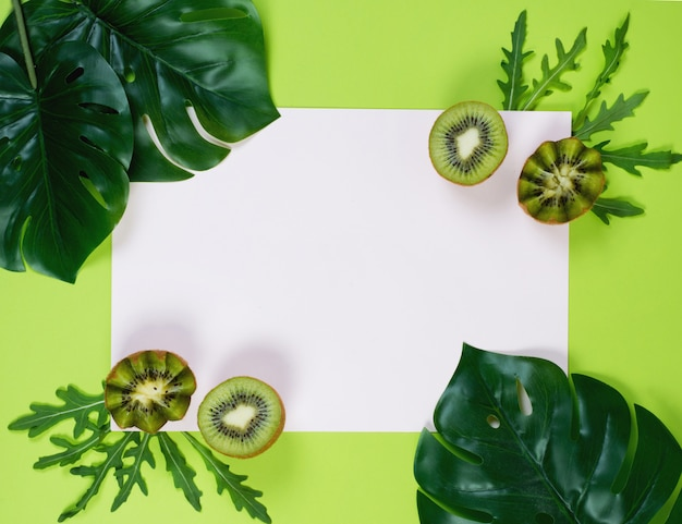 Colored green background with tropical monstera leaves. creative background for the design. copy space