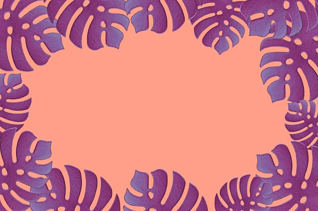 Colored monstera plant background. monstera leaves on coral color background. summer minimal concept. space for text