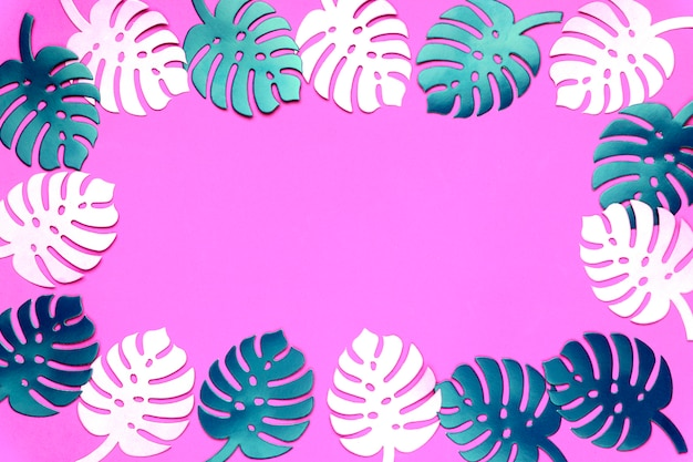 Colored monstera plant background. monstera leaves on plastic pink background