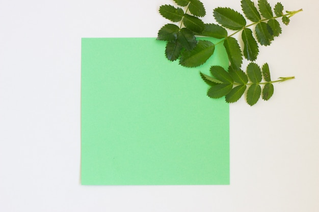 Colored paper for writing on a white background