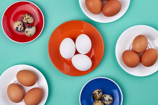 닭고기와 메추라기 알이 들어간 컬러 플레이트. 청록색 배경에 고립.