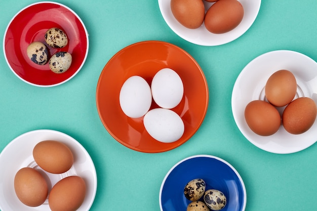Colored plates with chicken and quail eggs. isolated on turquoise background.