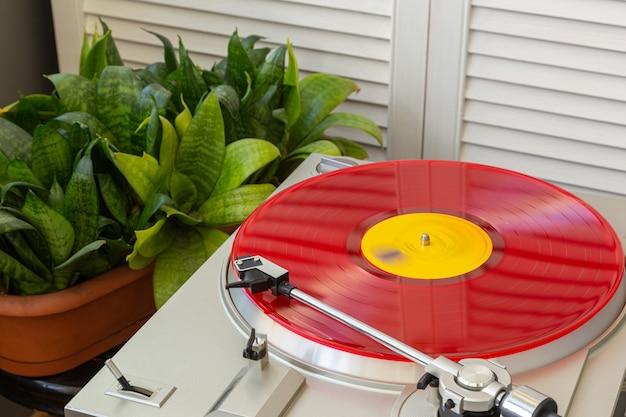 緑の近くで回転する色付きのビニールレコード