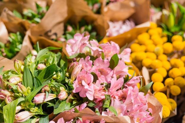 Colorful alstroemeria flowers