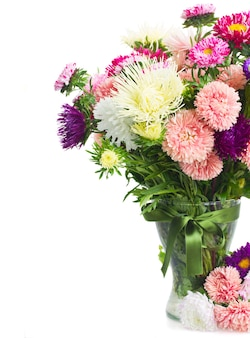 Colorful  aster flowers bouquet in glasss vase close up  isolated on white background