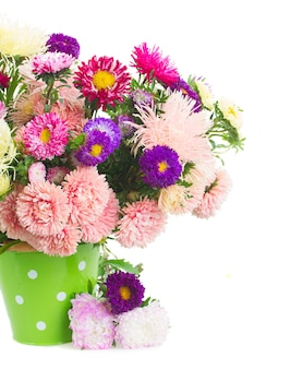 Colorful  aster flowers bouquet in green pot close up isolated on white background