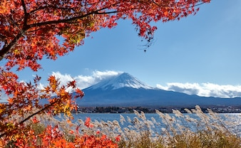 Colorful Autumn and Mountain Fuji with Snow capped at lake Kawaguchiko is best places in J