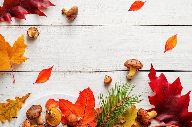 カラフルな秋の背景