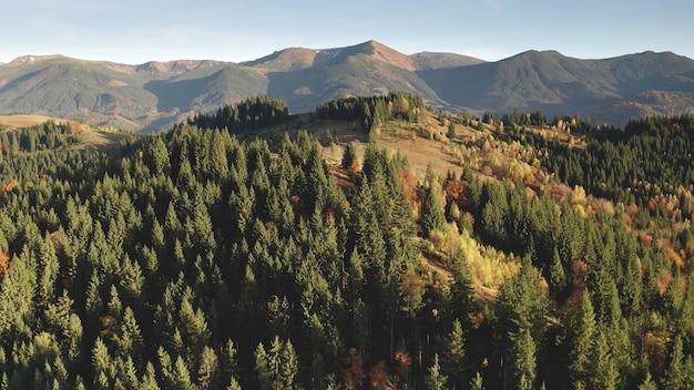 孤立した太陽の田園地帯の山の尾根空中誰も自然風景のカラフルな秋の森