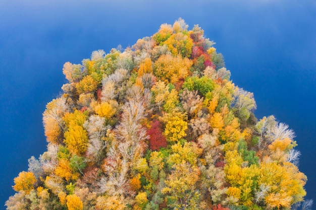 Colorful autumn forest with trees on the shore of a blue lake - the top of the aerial view.