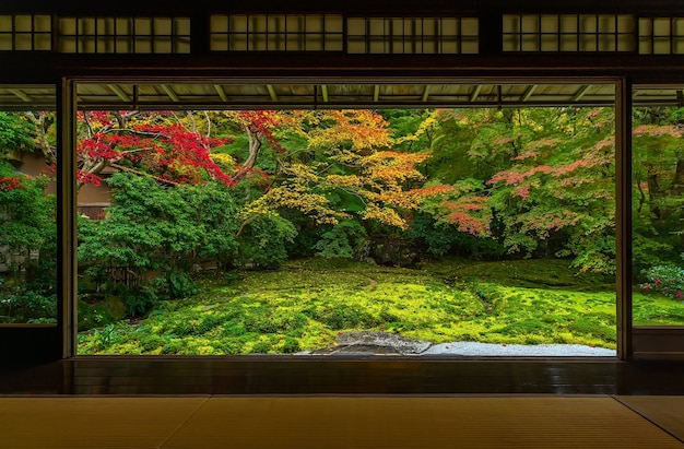 京都の瑠璃神寺の色とりどりの秋の日本庭園