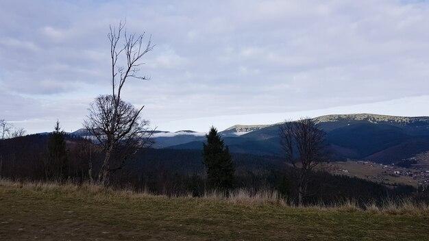 Красочный осенний пейзаж в карпатах с горными вершинами. карпаты, украина, европа. мир красоты. лес с оранжевыми листьями. осенний солнечный день на западе украины.