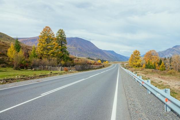山の高速道路の近くの日差しの中で黄色の枝を持つ針葉樹の木とカラフルな秋の風景。山道と秋の色の木々のある明るい風景。秋の山の高速道路。