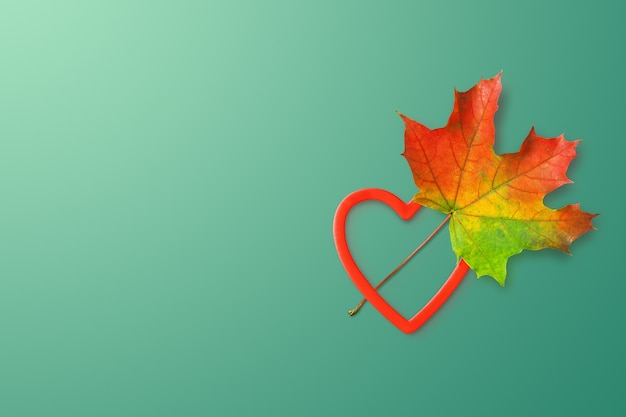 Colorful autumn leaf and a heart shape on deep mint