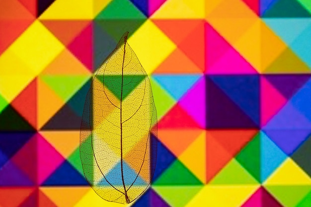 Colorful autumn leaf with geometric pattern