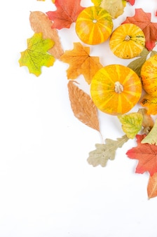 Colorful autumn leaves and small pumpkins