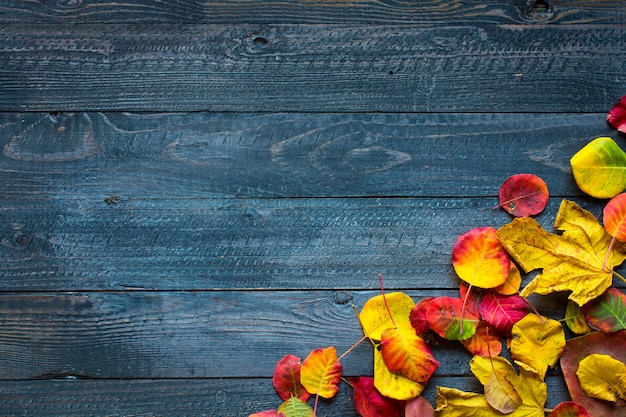 Colorful autumn leaves, over a wooden background